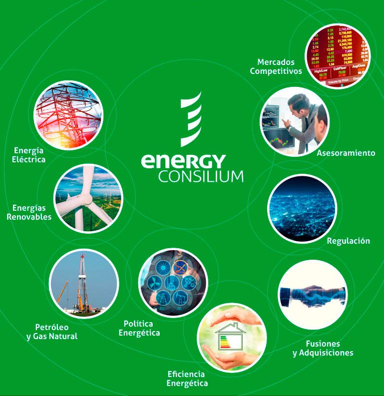 Energy Consilium - Servicios